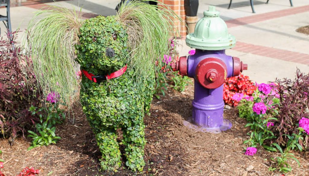 dog-topiary-south-carolina-festival-of-flowers