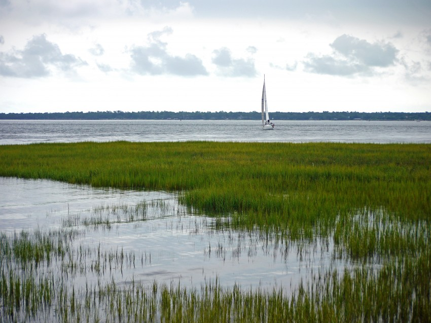 charleston sc landscape and sailboat
