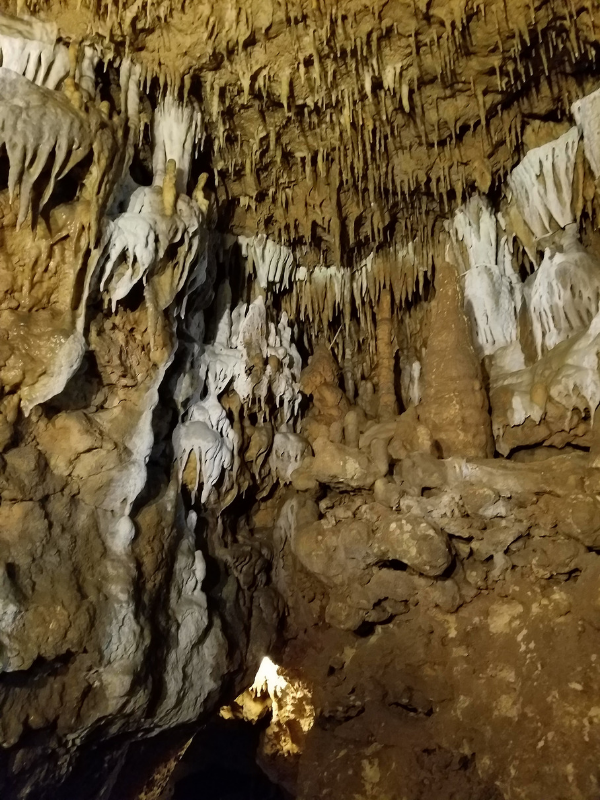florida-caverns-state-park-soda-straws