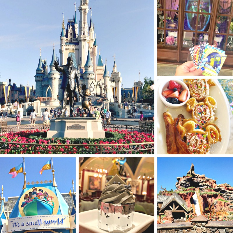 magic-kingdom-theme-park-attractions