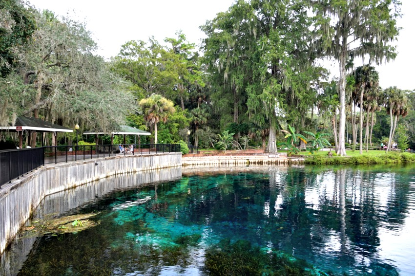 Visiting Silver Springs State Park is one of the highlights of visiting Florida.