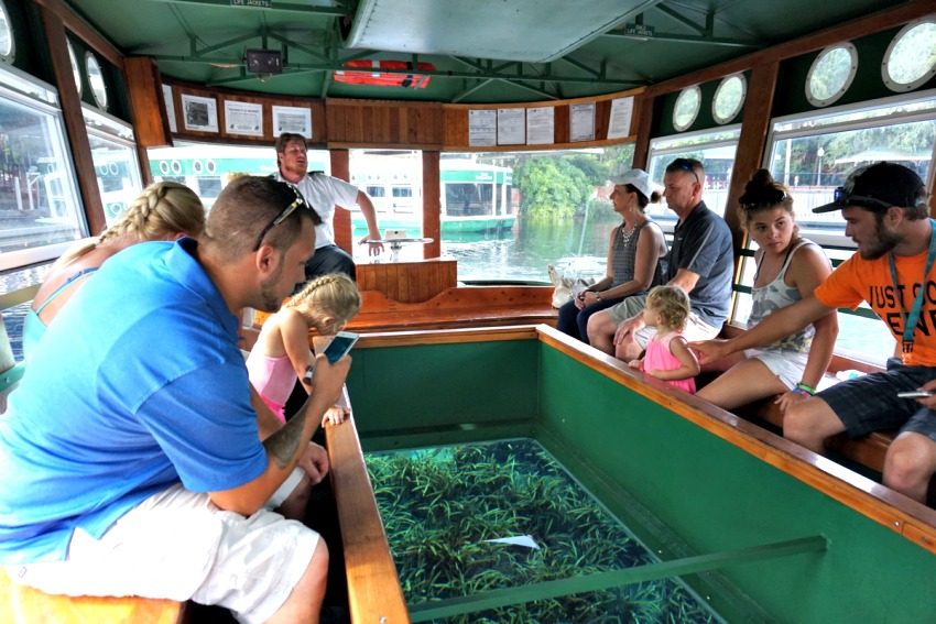 silver-springs-state-park-glass-bottom-boat