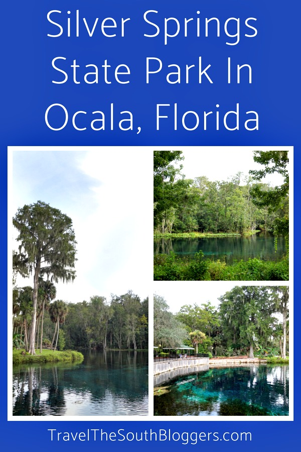 Visiting Silver Springs State Park is one of the highlights of visiting the sunshine state of Florida.
