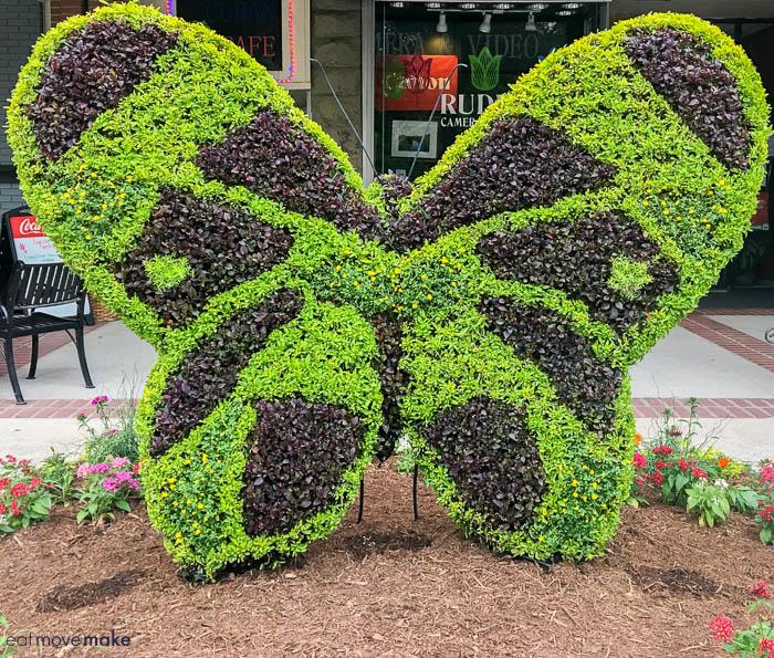 The South Carolina Festival of Flowers is made up of cool topiaries such as magnificent butterflies.