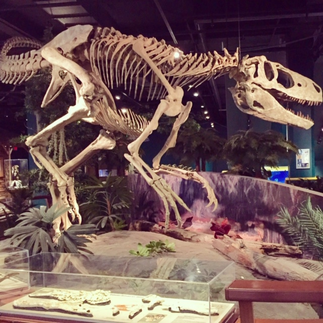 The tourism scene has exploded in Birmingham, Alabama and the McWane Science Center is one of the top reasons.