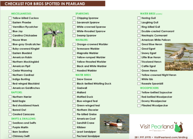 One of the things to do in Pearland, Texas is go birding.
