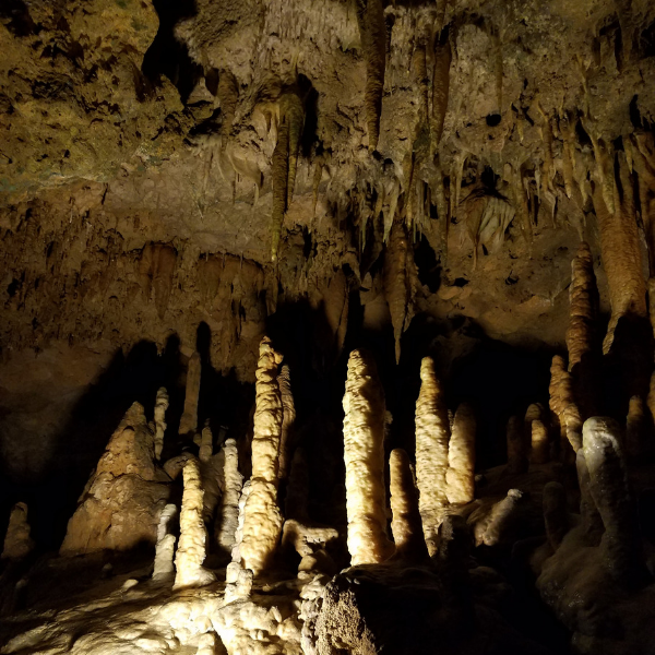 florida-state-park caves