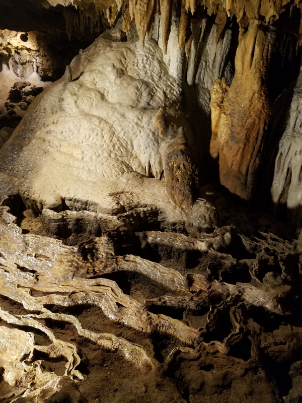 florida-caverns-state-park tour