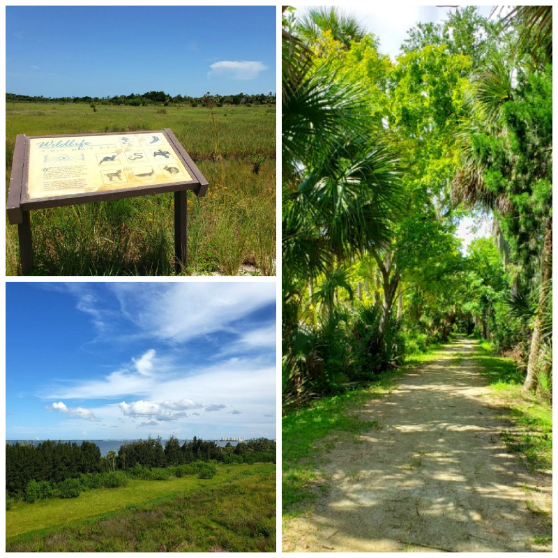 Titusville florida parks and scenery