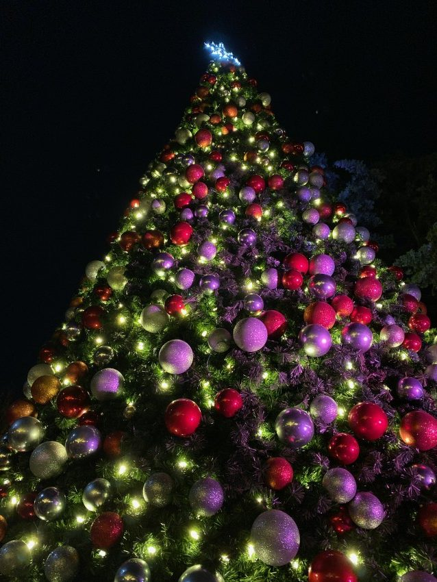 Dallas Arboretum holiday exhibit