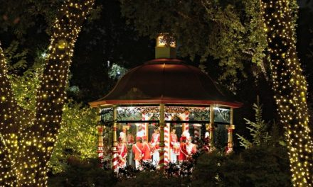 Dallas Arboretum: 12 Days of Christmas is Pure Magic!