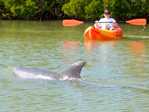 5 Things to Do in Lovers Key State Park, Florida