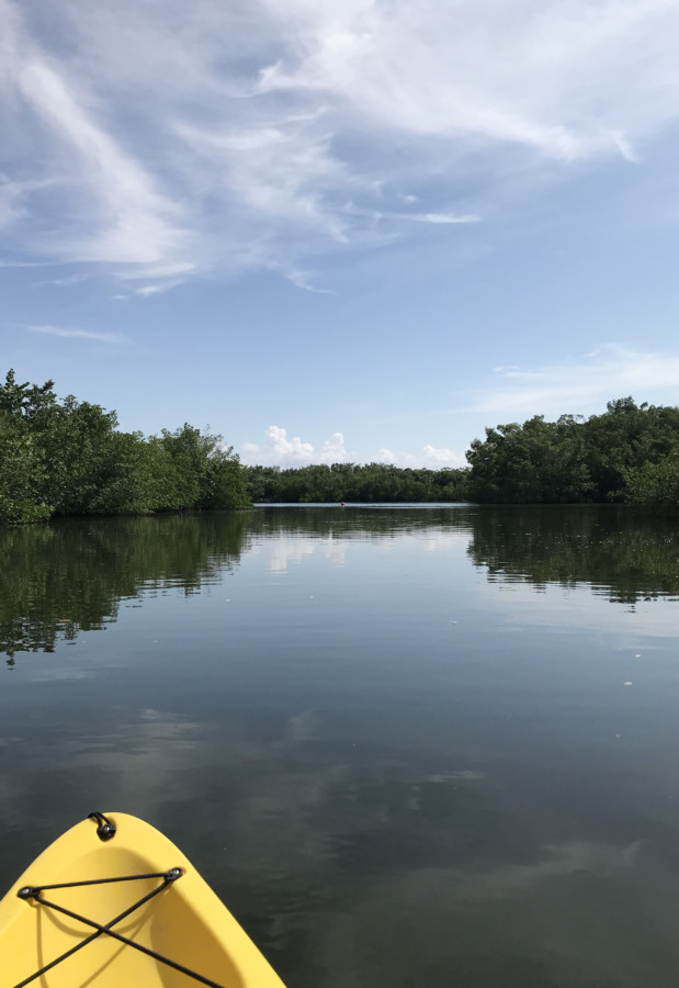 mangroves lovers key state park