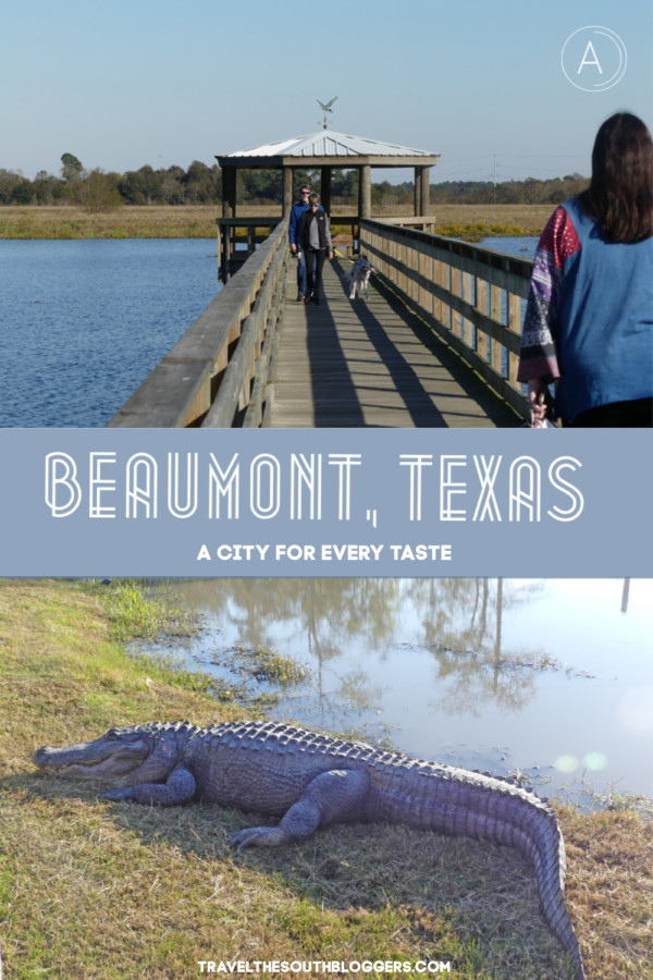 Beaumont texas travel pin