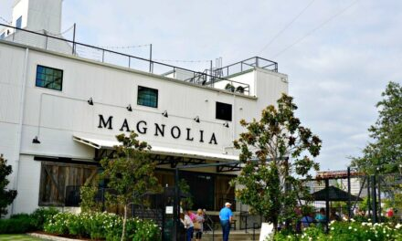 A Magical Day at the Magnolia Market, Waco, Texas