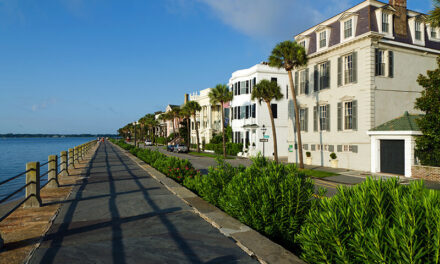 5 Fascinating Attractions You Can't Miss in Charleston, SC