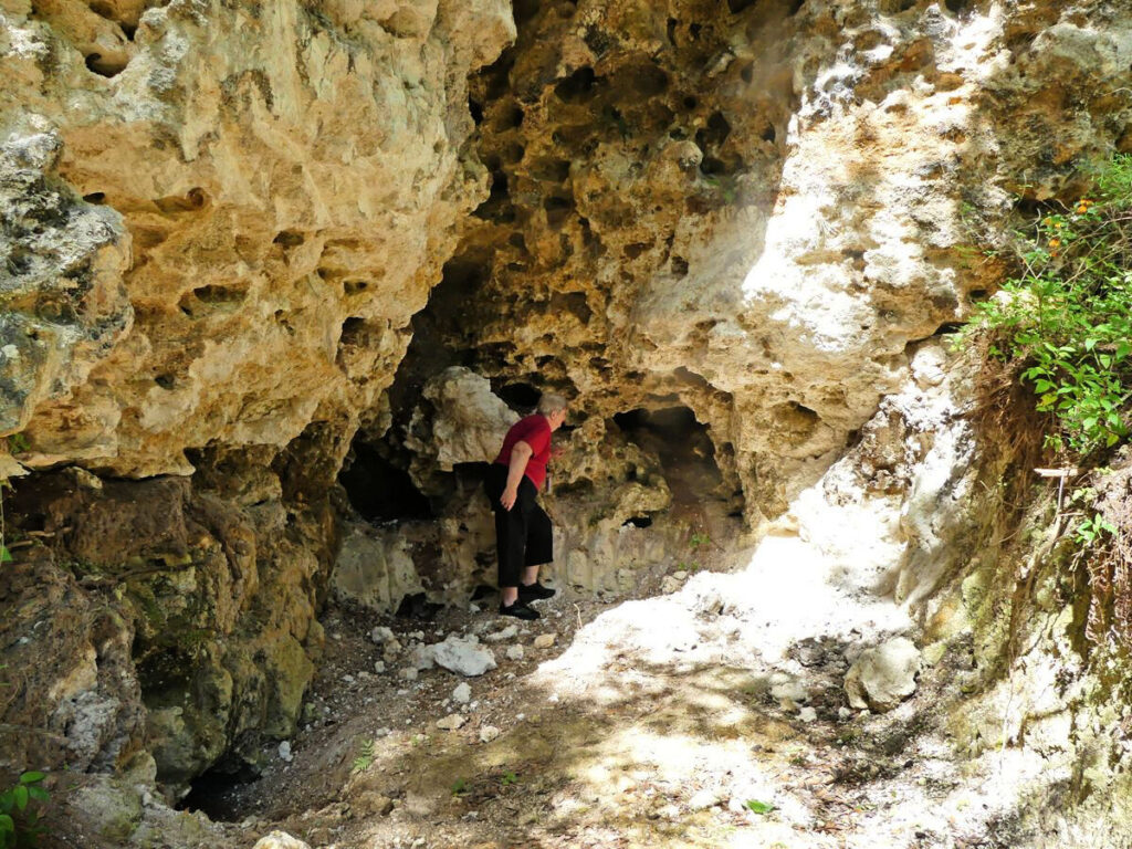 canyons in marion county florida